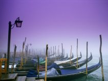 Maglovita Venecija